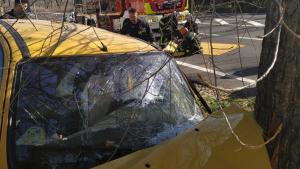 Uno de los conductores ha chocado con un árbol en DagaNzo de Arriba, Madrid