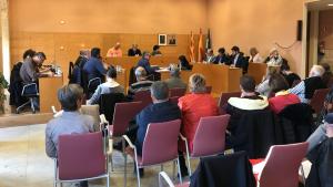 El ple ordinari del mes de març a l'Ajuntament de Torredembarra va congregar força públic.