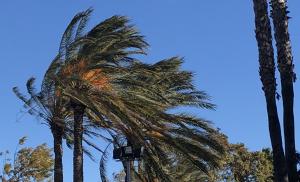 El vent serà molt intens aquest cap de setmana en alguns llocs