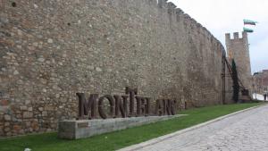Estat actual del paviment de la muralla de Santa Tecla de Montblanc