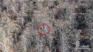 Imagen de la zona en la que ha ocurrido el accidente laboral