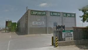 Imatge d'arxiu de la Cooperativa Olivarera del Baix Ebre