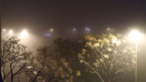 Imatge de la boira del vespre d'aquest dissabte a Reus