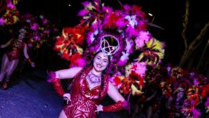 Les imatges de la Rua de Carnaval de Cunit 2019