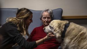 Les sessions de teràpia amb gossos s'adrecen a diversos col·lectius