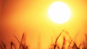 Les temperatures toquen sostre aquest diumenge