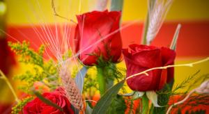 Roses tradicionals de Sant Jordi.