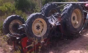 tractor bolcat
