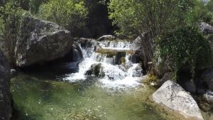 Una imatge del riu Brugent al seu pas per la Riba, el lloc on s'ha produït aquest tràgic succés aquest diumenge, 10 de març.