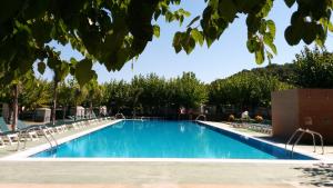 Una imatge d'una de les piscines del càmping Trillas de Tamarit.