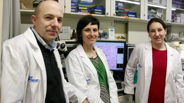 El cap del grup de recerca, Miquel Vila, i les primeres signants, Ariadna Laguna-Tuset i Iria Carballo-Carbajal