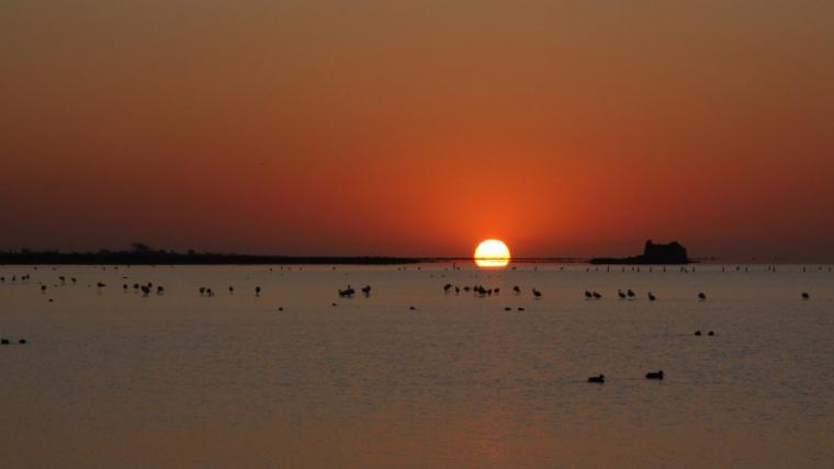 Sortida de sol dimecres al Delta de l'Ebre