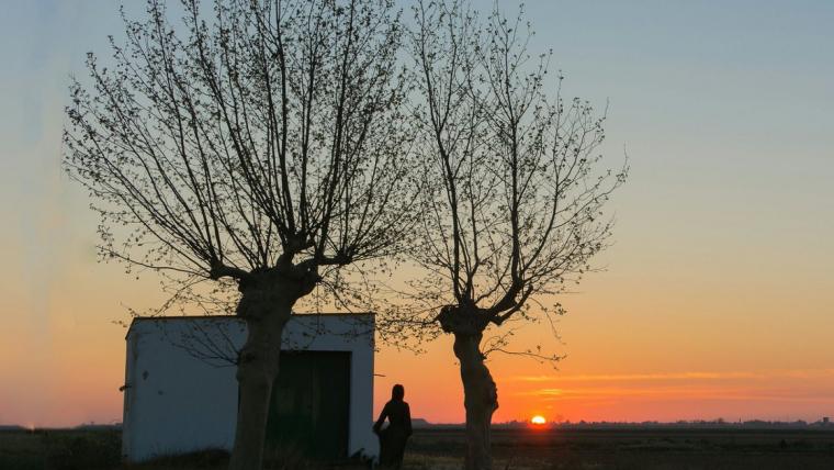 Sortida de sol dijous al Delta de l'Ebre