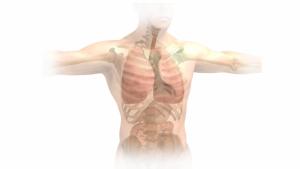 Edema pulmonar