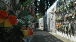 El cementiri obre interrompudament de 9h a 18h entre els dies 22 d'octubre i 2 de novembre