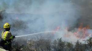 Els Bombers, durant l'incendi d'avui a la Serrà del Montsià