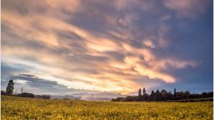 Este jueves se espera más calmado y soleado en la mitad norte del país, donde llevamos una semana muy tormentosa