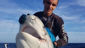 Imatge del cap de tauró pescat a Austràlia