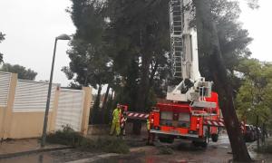 Imatge dels Bombers treballant en la retirada d'un arbre caigut a La Canyada, Paterna