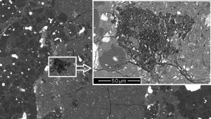 Imatge microscòpica del fragment trobat