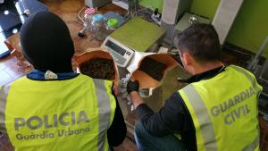 La Guàrdia Civil i la Guàrdia Urbana han clausurat una associació cannàbica de Tarragona per tràfic de drogues.