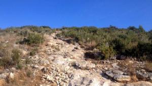 La zona de la muntanya del Comú on hi ha les restes de les trinxeres de Calafell.
