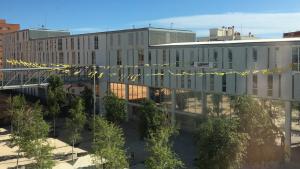 Pla general d'alguns llaços grocs sobre la plaça central del Campus Catalunya