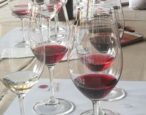 Tast professional de vins de la DO Conca de Barberà
