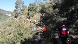 Un tram de la cursa-caminada al Niu de l'Àliga d'Alcover.