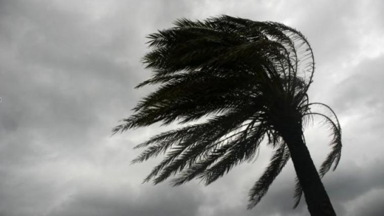 El vent serà fort a moltes comarques dijous i divendres