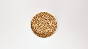 El amaranto es un cereal libre de gluten.
