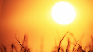 El sol y el calor serán los protagonistas a finales de semana