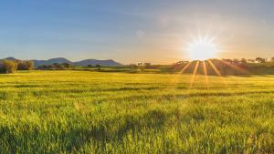 El sol y las temperaturas altas dominarán este lunes