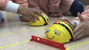 Els 'BeeBots', una espècia de robot-abella, són una de les grans novetats a les aules infantils de l'escola Saavedra