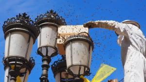Els Bombers de la Generalitat col·loquen un espai alternatiu per a les abelles al fanal