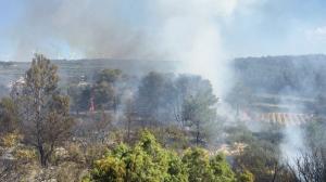 Els Bombers han activat 6 dotacions per treballar en l'incendi