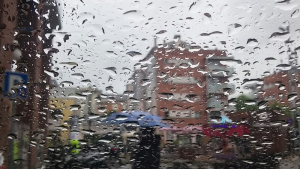 Gotes de la pluja persistent d'avui divendres a Olot