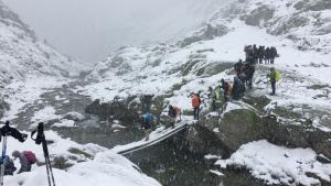 Imatge de la nevada a les cotes altes del Ripollès aquest divendres al matí