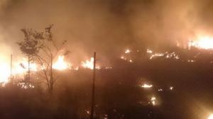 Imatge de l'incendi de la nit d'aquest dimarts a Alforja, on van cremar matolls i un cobert de fusta