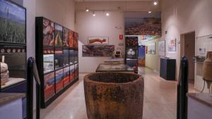 Imatge de l'interior del Museu Bíblic Tarraconense, construït sobre d'una exedra del temple romà d'August.