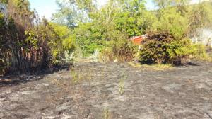 Imatge del terreny afectat per l'incendi, a Horta de Sant Joan