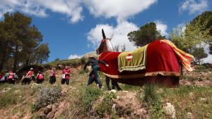 La 29a Pujada de la Mulassa a Miramar tindrà lloc el diumenge 19 de maig