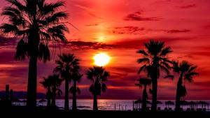 La primera noche tropical del año se ha registrado este jueves en el sureste peninsular y Baleares