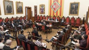 La sessió extraordinària del ple municipal d'aquest mes de maig