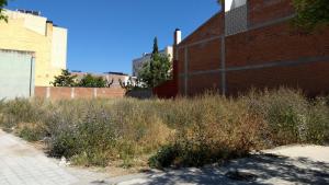 L'Ajuntament del Morell insta veïnes i veïns a netejar patis i solars