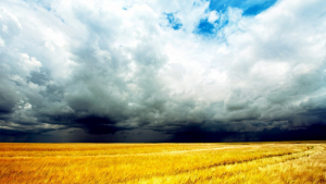Las tormentas y chubascos de tarde seguirán este domingo en algunos puntos