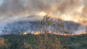 L'incendi s'ha originat a la zona de La Cargola