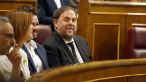Oriol Junqueras, assegut al costat de Rufián al Congrés dels Diputats