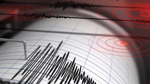 Pràcticament ningú va detectar el terratrèmol