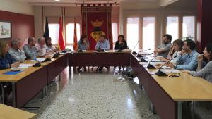 Sessió plenària celebrada a l'Hospitalet de l'Infant el passat 30 d'abril